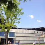 京都水族館を初めて訪れる人にオススメする3つの楽しみ方